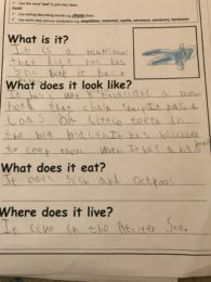 Fabulous writing in Year 1!